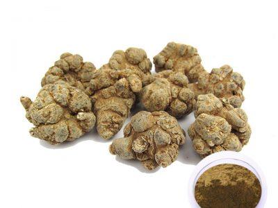500g-High-Quality-100-Natural-yunnan-Sanqi-panax-Notoginseng-Root-Sanqi-Extract-Powder-DIY-Mask-Powder.jpg_960x960